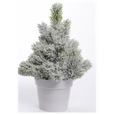 Pinetto Cm. 25 C / Vaso Verde Nev