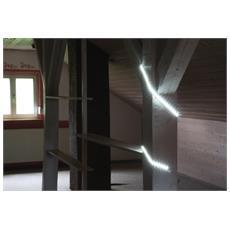 LED Strip ro5m 60 / L bianco LCT indoor 179974