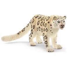 Leopardo Delle Nevi (5) New 01-2020