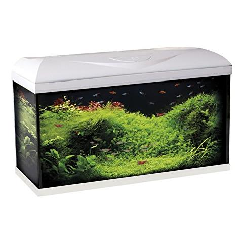 Acquario Wave Basic 80 Nero Led 95 Litri 82x32x45h Amtra Aquariums & Tanks Pet Supplies