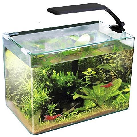 Aquarien Wave Box 30 Orion Led 4.2w Haustierbedarf