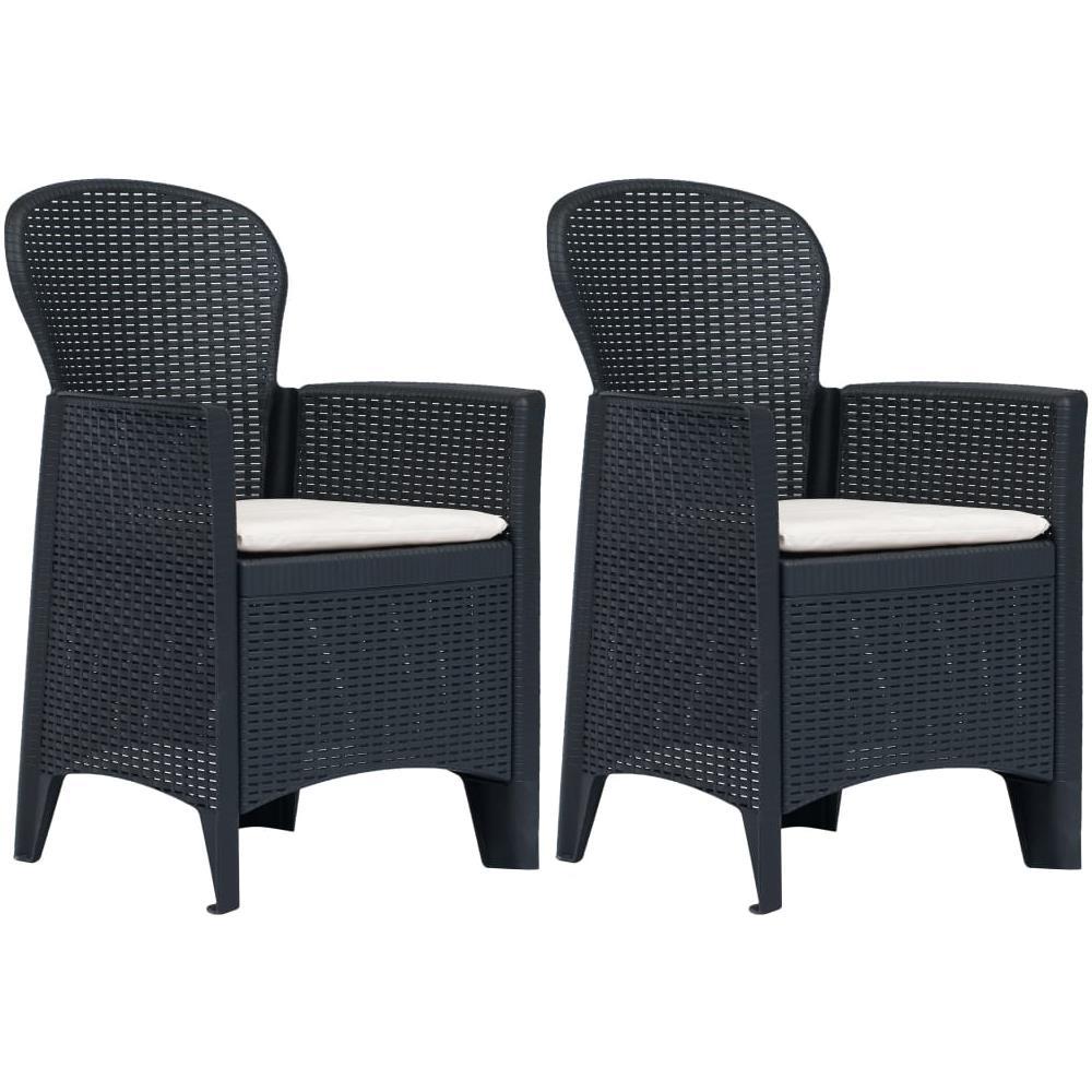 Sedie Plastica Per Giardino.Vidaxl Sedie Da Giardino 2 Pz Cuscino Antracite Plastica Stile