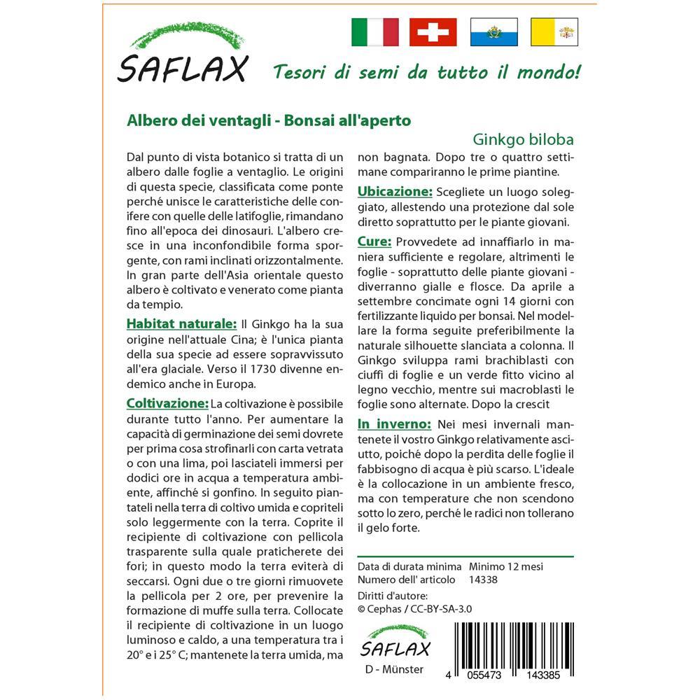 Albero dei ventagli Ginkgo biloba 4 semi SAFLAX Con substrato