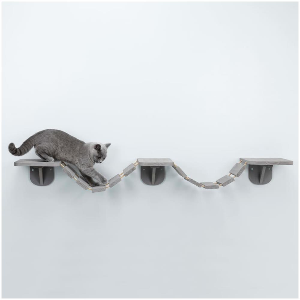 Gato paseando en la altura