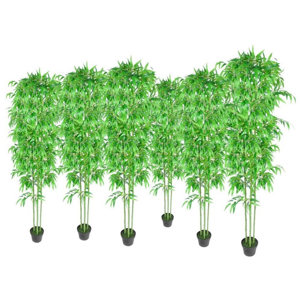 Piante Da Appartamento Bambu.Vidaxl Pianta Piante Di Bambu Set Da 6 Bambu Appartamento Eprice