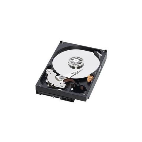 Storage 2TB 3.5'' SATA 2000GB SATA disco rigido interno