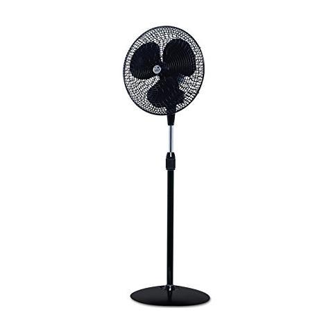 Gordon C40, Ventilatore Da Terra, - Nero