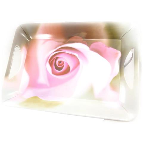 plateau 'jardin des plantes' rosa - [ j7932]