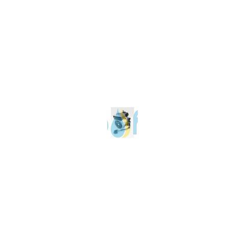 Circolatore Nuova Plus Vaillant 0020025042