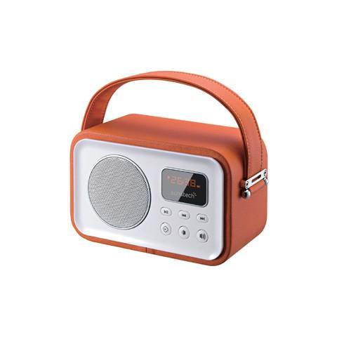 SUNSTECH RPBT450, Litio, Portatile, LED, FM, Batteria, Audio (3.5mm) , USB