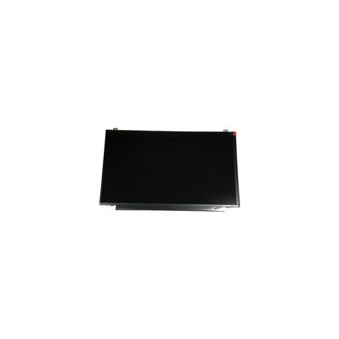 Image of 00NY534 Display
