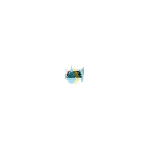 Scheda Elettronica Vaillant 0020202559