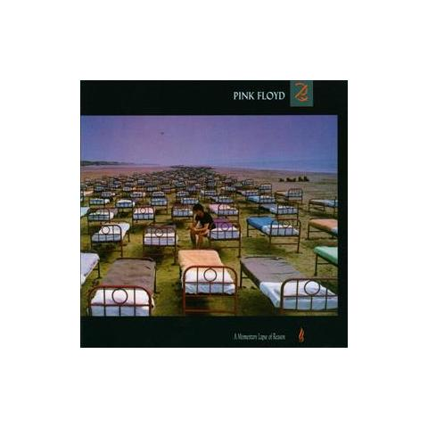 WARNER BROS Cd Pink Floyd A Momentary Lapse Of Reason