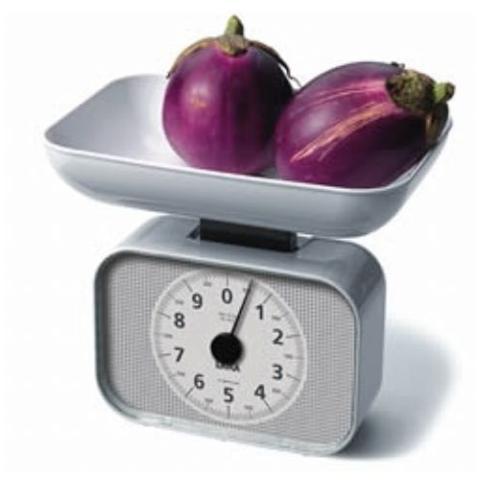 Bilancia Alimentazione Analogica con Piatto Portata 10 kg